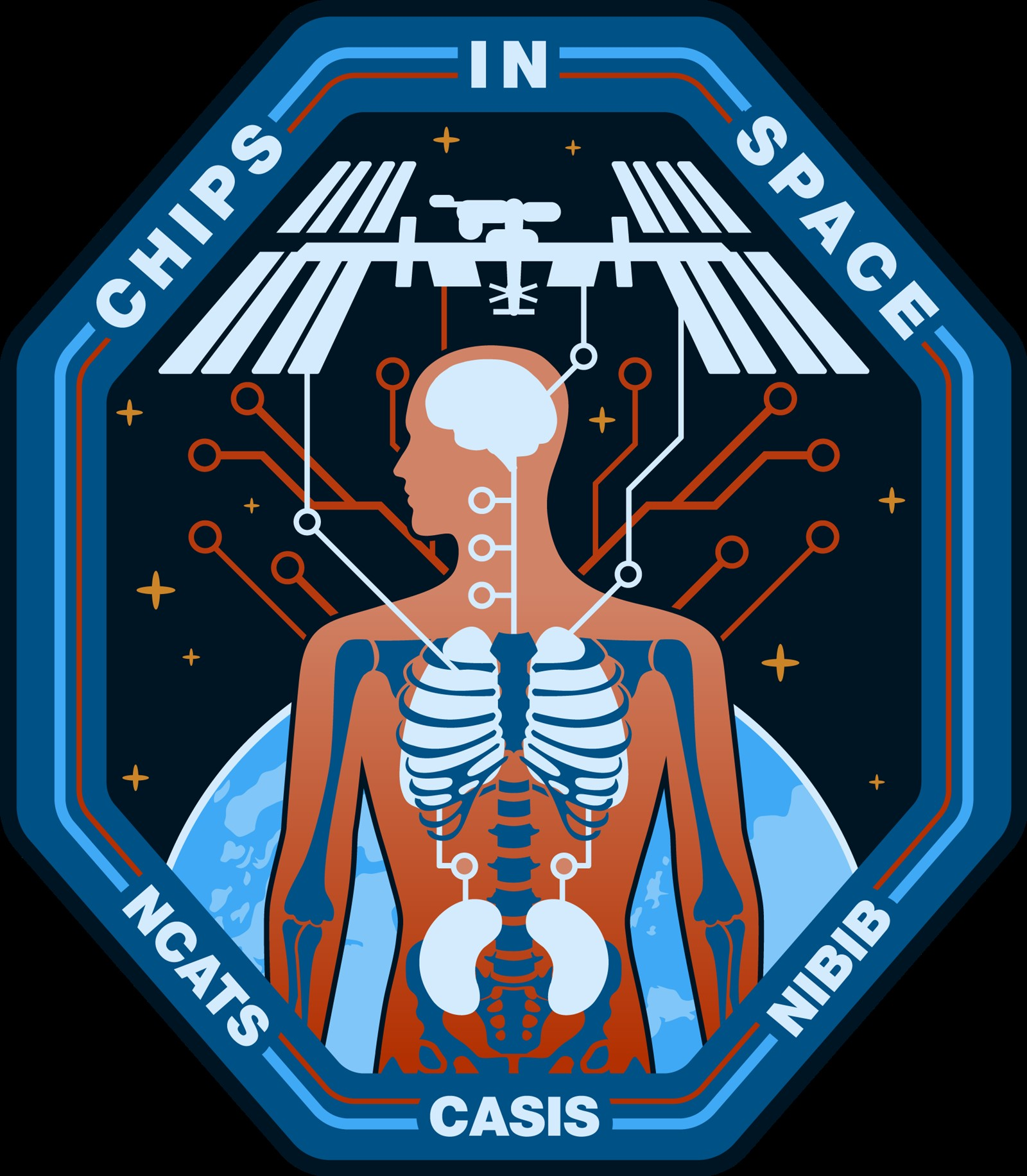 CASIS17 075 Chips in Space Mission Patch Final 1600