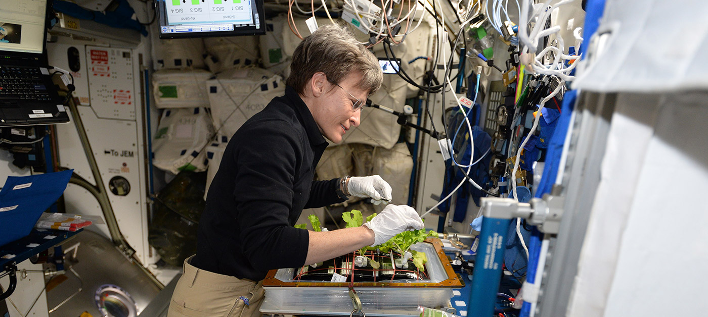 astronaut performs plant experiment on iss banner