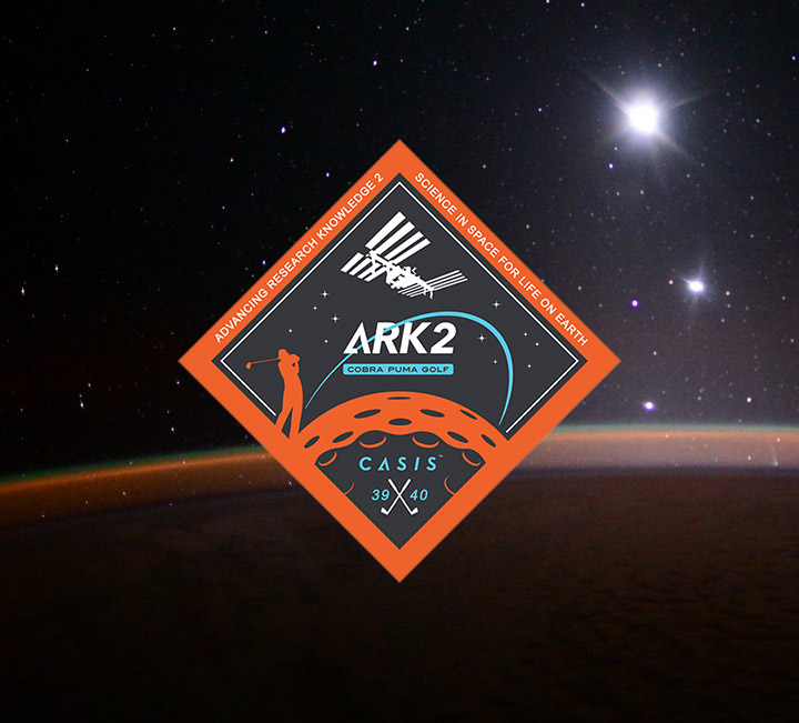 casis ark2 patch space