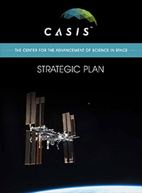 casis strategic plan cover