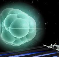 stem cells microgravity rfp thumbnail