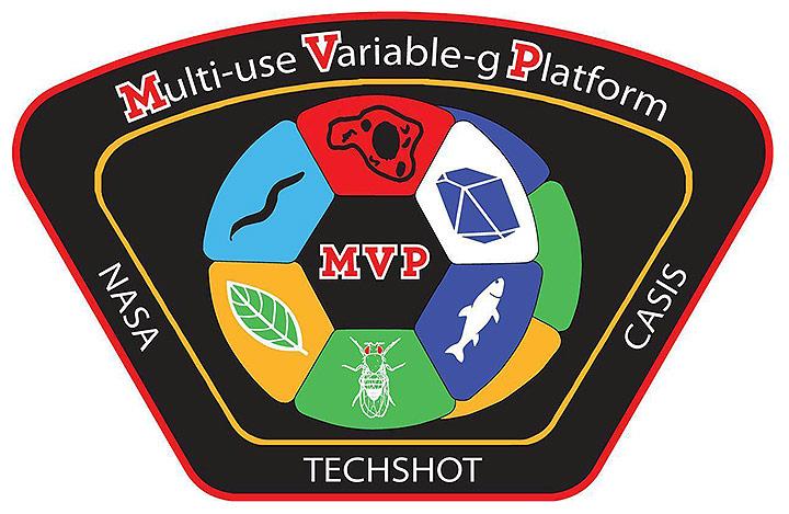 techshot mvp patch